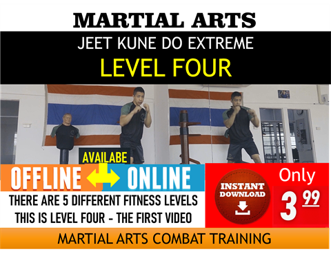 Jeet Kune Do Martial Arts - Level 4