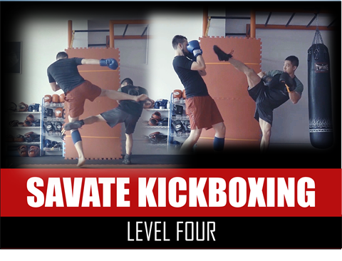 Savate Kickboxing Martial Arts - Level 4