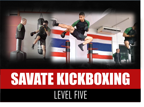 Savate Kickboxing Martial Arts - Level 5
