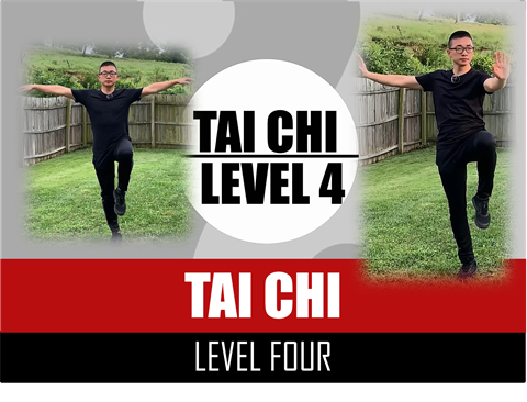 Tai Chi - Level Four